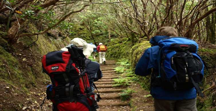 Tenerife: Hiking and Culture Full-Day Tour