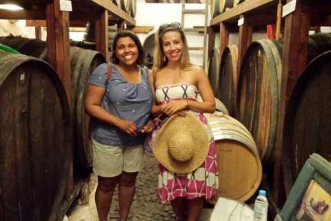 Santorini: recorrido de medio día por la historia y las rutas del vino