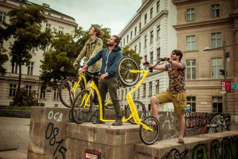 Vienna: Guided Tour by Kick Bike or E-Scooter with a Local