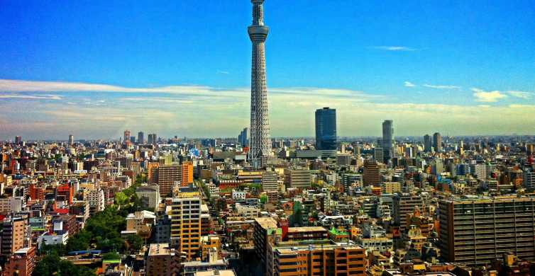 Tokyo Private Welcome Tour with a Local
