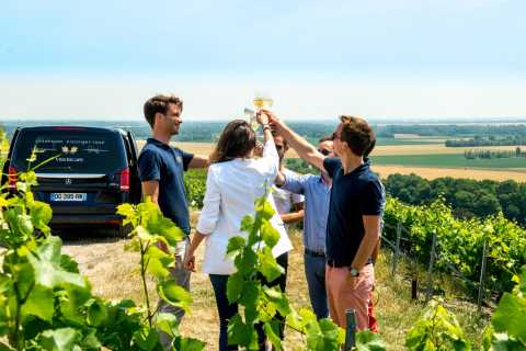 Reims: Full-Day Moët's Vineyard & Family Winery Group Tour