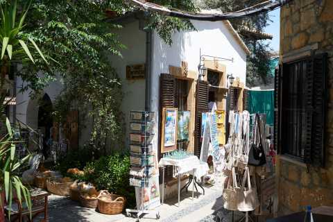 From Ayia Napa and Protaras: Nicosia Guided Tour