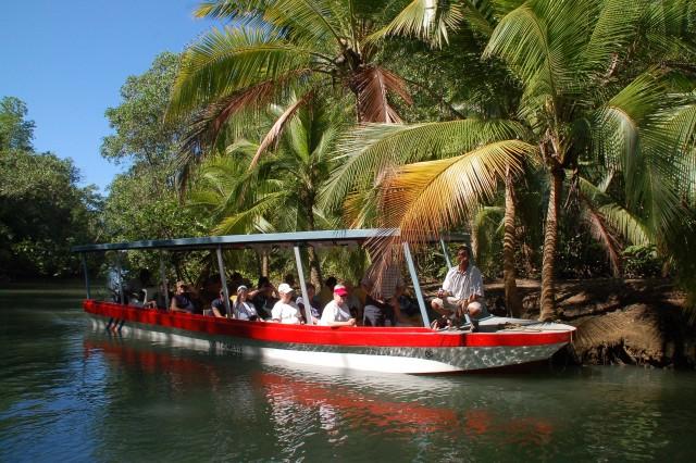 Quepos: boottocht op Mangrove op het eiland Damas