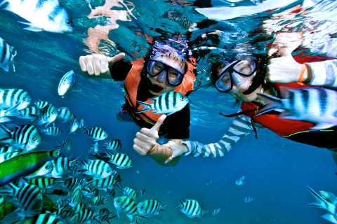 From Hurghada: Giftun Island Snorkeling Day Trip