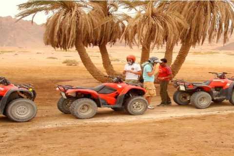 Hurghada: Safari a tre ore di mattina