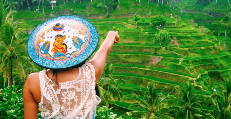 Ubud: cascate, terrazze di riso e foresta delle scimmie