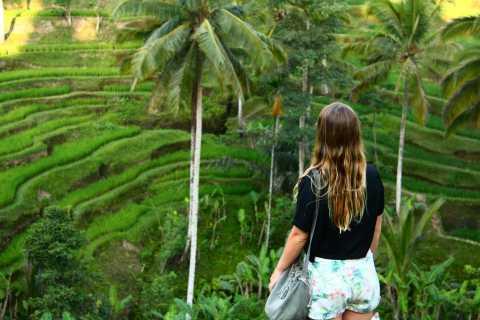 Bali: tour terrazze di riso di Ubud, templi e vulcano