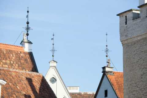 Best of Tallinn with Kadriorg Palace and Pirita Tour