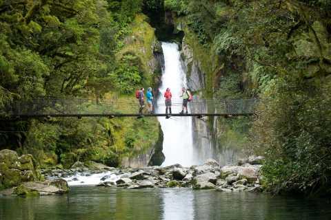 Milford Sound: Half-dag begeleide Milford Track Walk