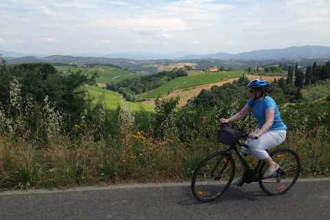 From Florence: Downhill Bike Tour of Tuscany and Chianti