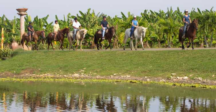 From San Juan: Horse Riding at a Private Ranch