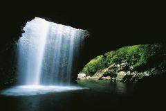 Gold Coast: Excursão à Tarde Ponte Natural e Springbrook
