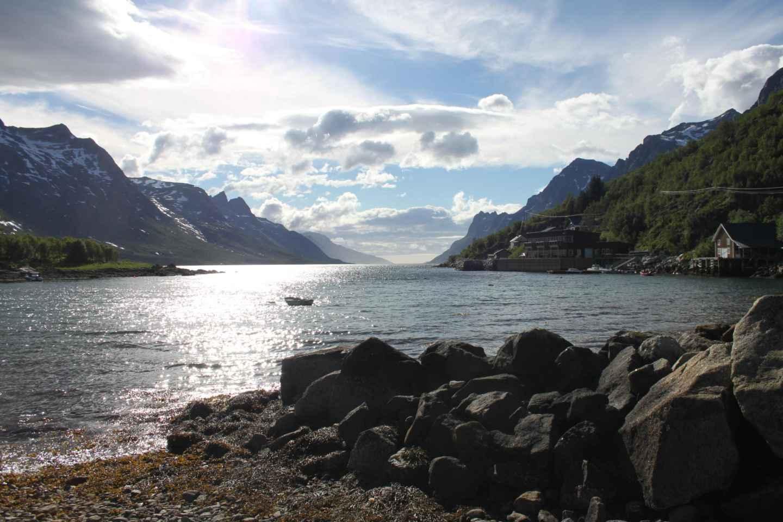 Ab Tromsø: All-inclusive-Tour per Bus zu den Fjorden
