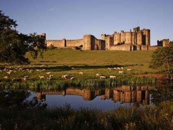 Ab Edinburgh: Holy Island, Alnwick Castle & Northumbria