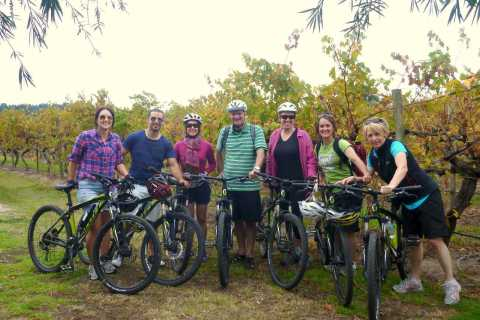 Mclaren Vale Hills Vines and Wines Bike Tour from Adelaide