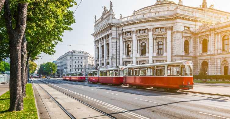 Vienna City Card: komunikacja publiczna i zniżki