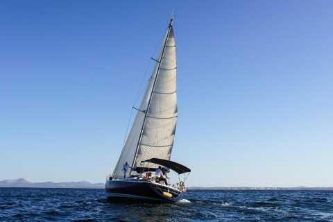 Van Port d'Alcúdia: Dag Zeiltocht Parc Natural Llevant