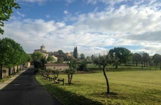 Von Montpellier: Halbtägiges Pic Saint Loup-Weinerlebnis