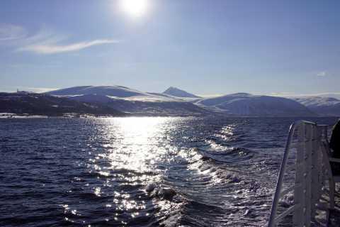 Tromsø: 5-Hour All-Inclusive Wildlife & Bird Fjord Cruise