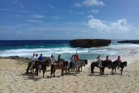 Rancho Loco Moro Beach Horseback Tour