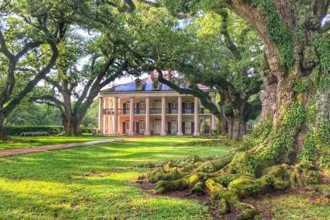New Orleans Oak Alley Plantation Half-Day Tour
