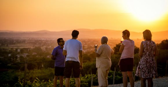 Assisi: Organic Winery Tour with Tastings & Typical Food