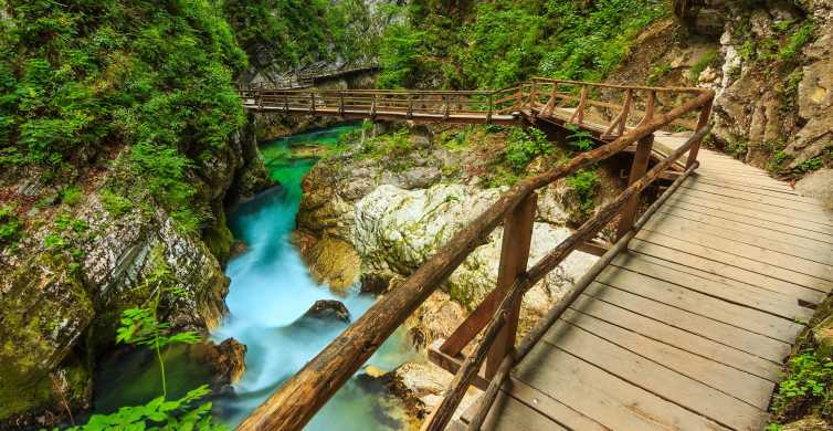 From Bled: Self-Guided E-Bike Tour of Vintgar Gorge