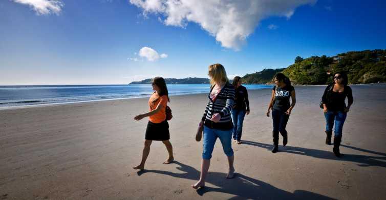 Waiheke: Bilhetes para Balsa à Ilha e Ônibus Hop-On Hop-Off