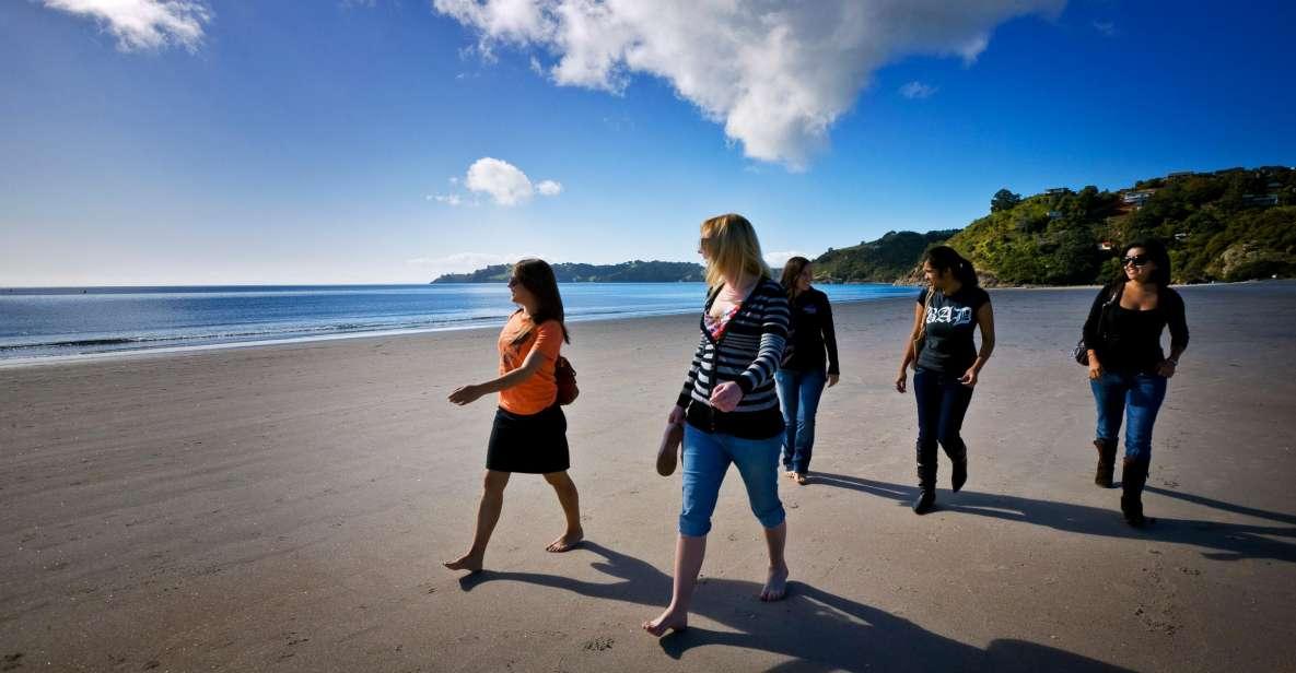 Waiheke Island Ferry & Explorer Hop-On Hop-Off Bus Tickets