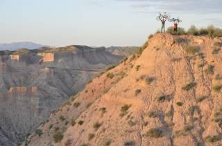 Ab Granada: E-Bike Tour von Guadix und der Wüste von Gorafe