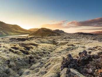 Ab Reykjavík: Islandpferd-Reiten in den Lavafeldern