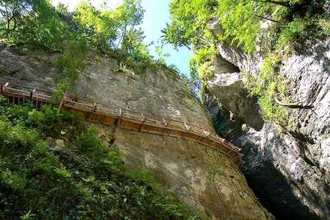 De Bled: Half-Day Pokljuka Gorge Trail Randonnée