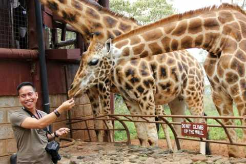 Nairobi: Half-Day Baby Elephant and Giraffe Experience