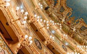The Majestic Teatro La Fenice: Guided Tour in Venice