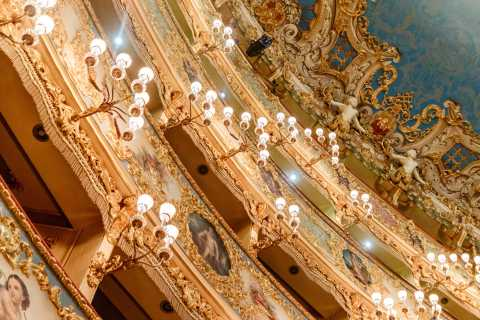 The Majestic Teatro La Fenice: Guided Tour in Venice