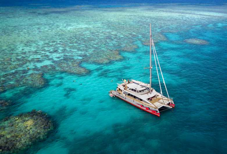 Great Barrier Reef: Premium Catamaran Cruise from Cairns - Cairns,  Australia   GetYourGuide