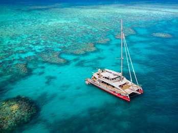 Ab Cairns: Premium-Katamaran-Tour zum Great-Barrier-Riff