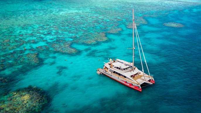 Catamarán premium a la Gran Barrera de Coral desde Cairns