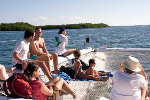 Catamaran Cruise Tour to Cayo Blanco with Dolphins