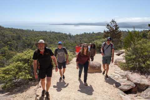 From Launceston: Full-Day Wineglass Bay Explorer Tour