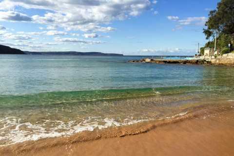 Sydney: Northern Beaches and Ku-ring-gai National Park Tour