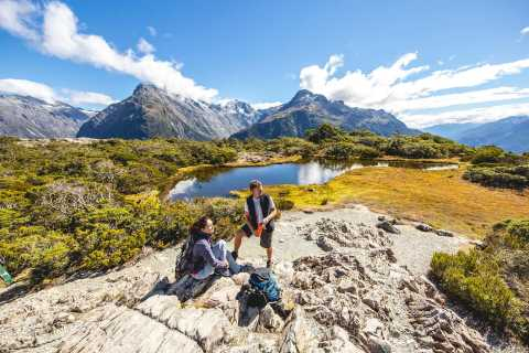 From Te Anau: Full Day Guided Walk Along the Routeburn Track