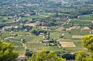 Ab Marseille: Bandol und Cassis mit Weinprobe