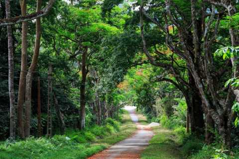 Private Day Tour: Cuc Phuong National Park from Hanoi
