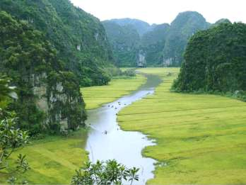 Ab Hanoi: Ninh Binh & Nationalpark Cuc Phuong (2 Tage)