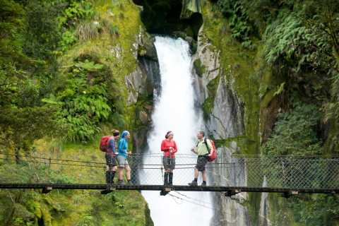Milford Sound: Full Day Guided Hike and Scenic Cruise