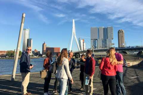 Rotterdam 2-Hour Grand Walking Tour
