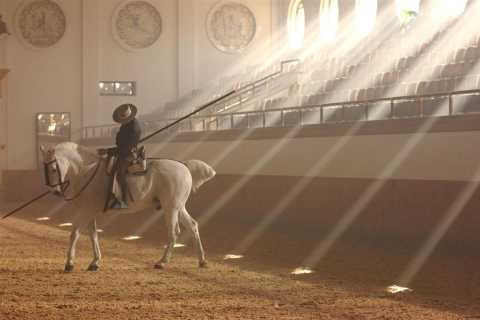Jerez Tour with Horse Show & Sherry Tasting from Seville