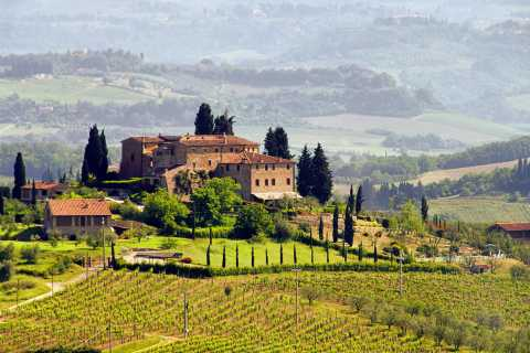 San Gimignano & Siena: Small Group Wine Tour from Rome