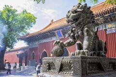 Templo de Lama, Área Olímpica, Zoológico de Pequim e Hutongs Tour